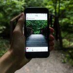 Mobillal készített fotó az erdőben: ez is felhasználói tartalom